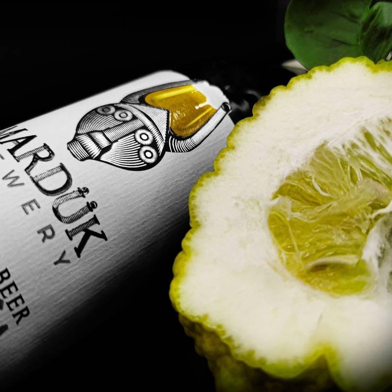 https://www.birrificiomarduk.com/wp-content/uploads/2020/05/9d_Pompia_Marduk_brewery_birrificio_agricolo_guarda_oltre_birre_Irgoli_Sardegna.jpg